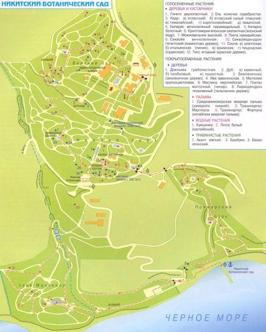Схематическая карта Никитского Ботанического Сада