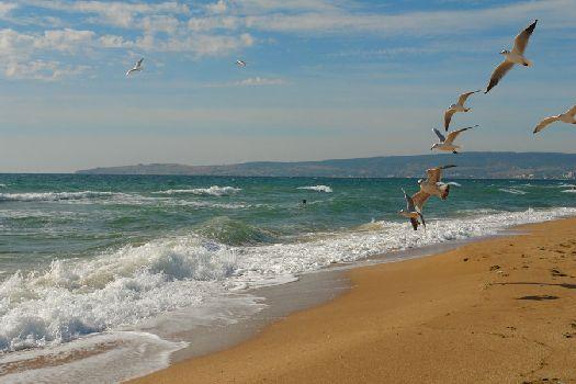 Пляжи Адлера - фото песчаных и галечных пляжей для отдыха