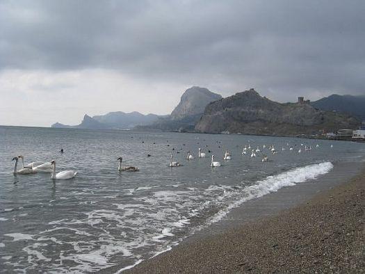 Погода в калининском районе х греки калининского района краснодарского края