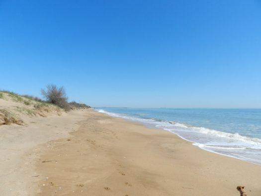 Пляж в Аршинцево на Черном море
