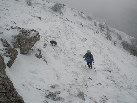 Горные вершины Демерджи, покрытые снегом, выглядят зимой потрясающе.