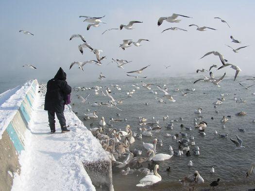 Гулять у моря зимой в Крыму - необыкновенное чувство, главное одеться по погоде!