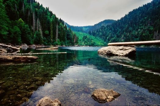 В Абхазии действительно красивая природа, и многие считают она стоит того, чтобы закрыть глаза на некоторые недостатки отдыха